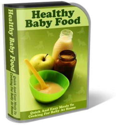 Pay for Healthy Baby Food Website Template Plr Pack