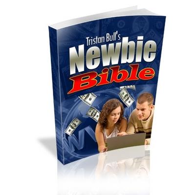 Free The Newbie Bible - Internet Marketing Success PLR Ebook Download thumbnail