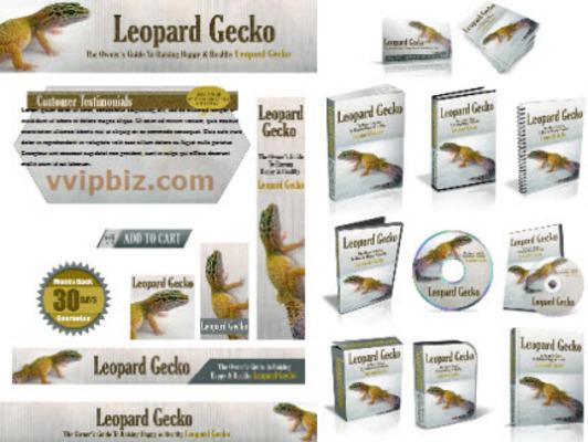 Pay for Leopard Gecko Website Template Plr Pack