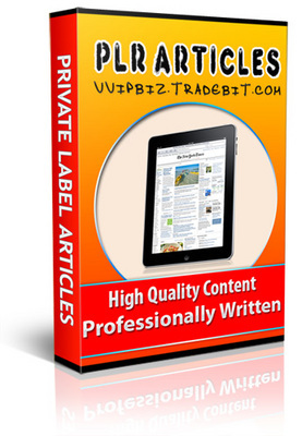 Pay for 52 Small Business PLR Articles