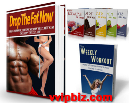 Pay for Drop The Fat Now PLR Ebook