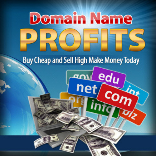 Pay for How to Buy and Sell Domain Names for Profit