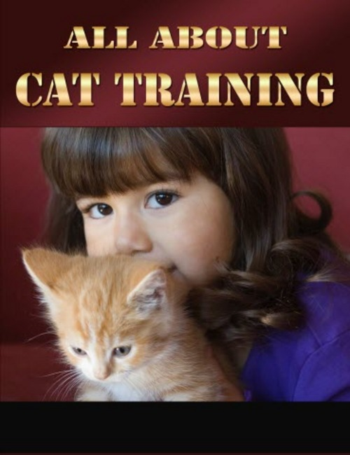 Pay for All About Cat Training PLR Ebook