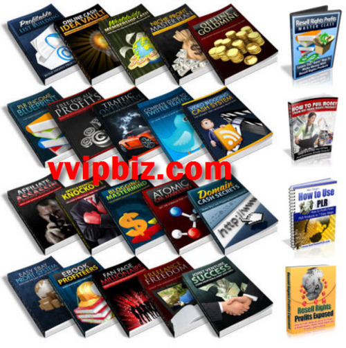 Pay for Internet Marketing Blowout - 20 PLR Ebooks Bundle