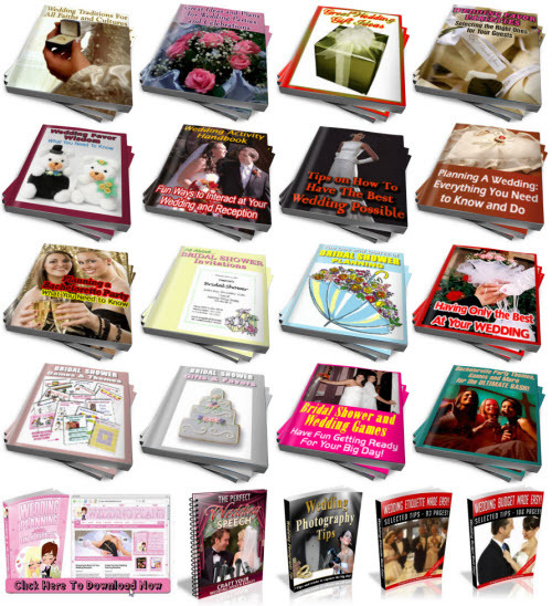 Pay for Wedding Planning PLR Reports Package with Special Bonus