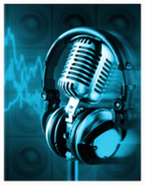 Pay for 23 Business Audio Courses, PLR
