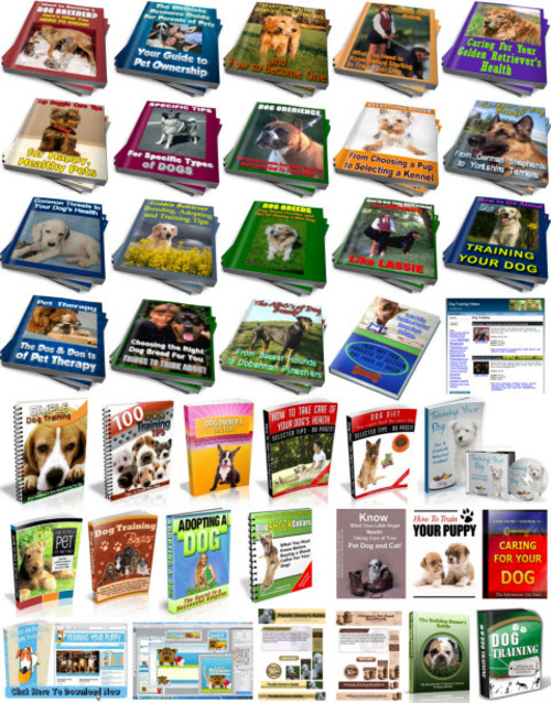 Pay for Puppy, Dog Training PLR Reports Package with Special Bonus