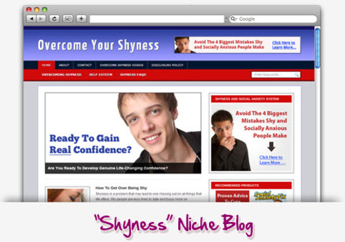 Pay for Shyness Niche Blog