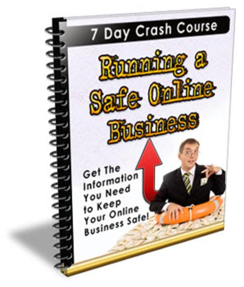Pay for Running A Safe Online Business PLR Newsletter Series