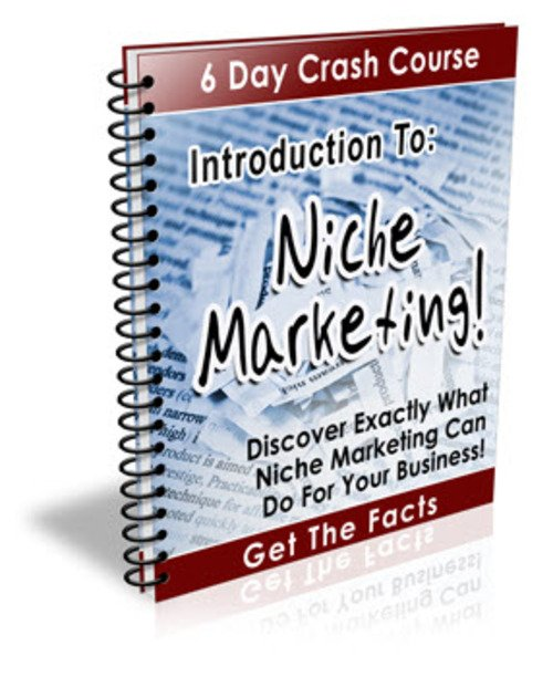 Pay for Intro to Niche Marketing PLR Newsletter Series