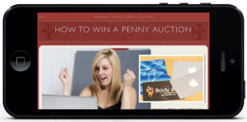 Pay for How To Win Penny Auctions - PLR