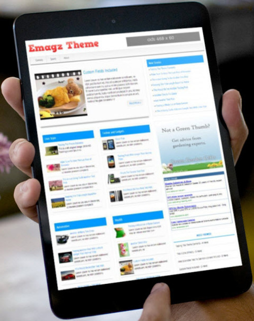 Pay for EMagz Wordpress Theme Developer License