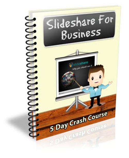 Pay for Slideshare For Business PLR Newsletter Series