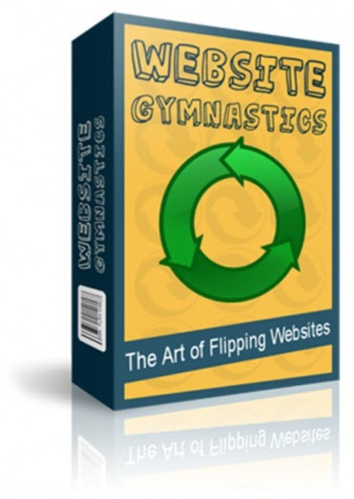 Pay for Website Gymnastics - The Art of Flipping Websites