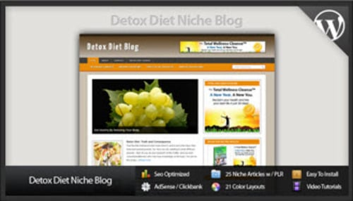 Pay for Detox Diet Niche Blog - Video Tutorials Included