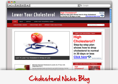 Pay for Cholesterol Niche Blog - Highly Optimized Blogs