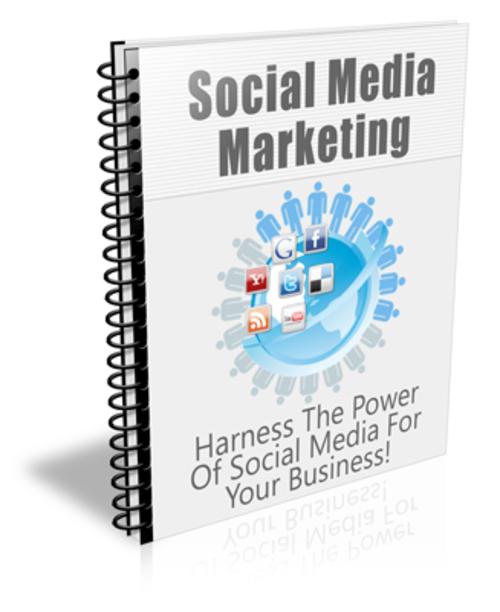Pay for Social Media Marketing PLR Newsletter Series