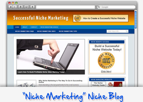 Pay for Niche Marketing Niche Blog - Highly Optimized WP Blogs
