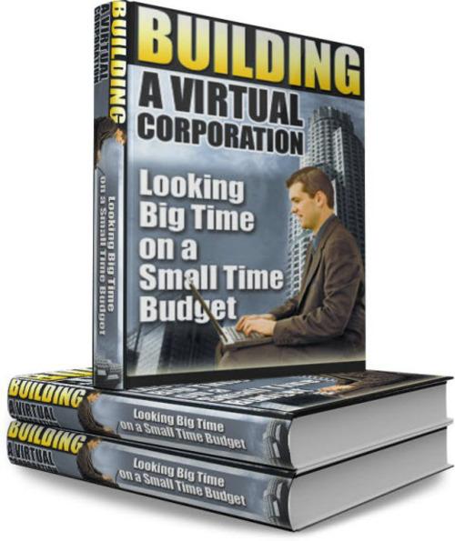 Building A Virtual Corporation Plr Download Business