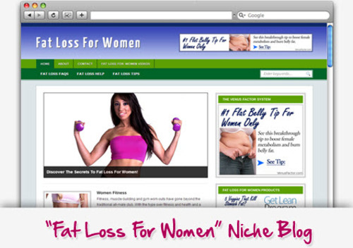 Pay for Fat Loss For Women Niche Blog - Highly Optimized WP Blogs