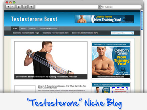 Pay for Testosterone Boost Niche Blog - Highly Optimized WP Blogs