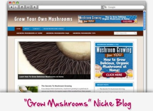 Pay for Grow Mushrooms Niche Blog