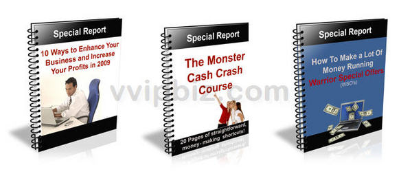 Pay for The Monster Cash Crash Course (Unrestricted PLR)