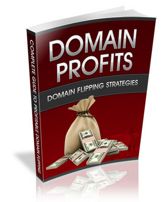 Pay for DOMAIN PROFITS: DOMAIN FLIPPING STRATEGIES