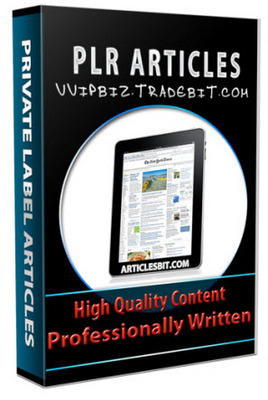 Pay for 25 Leadership Development PLR Articles