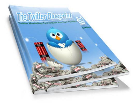 Pay for The Twitter Blueprint ... Twitter Boom PLR