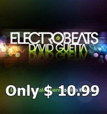 Pay for David Guetta ElectroBeats Samples (Aiff)