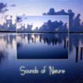 Thumbnail Wavemusik - Sounds Of Nature