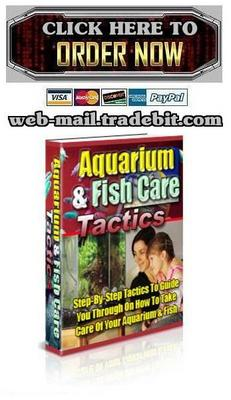 Pay for Aquarium & Fish Care Tactics