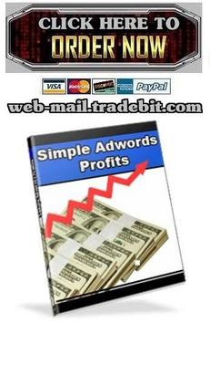 Pay for Simple Adwords Profits