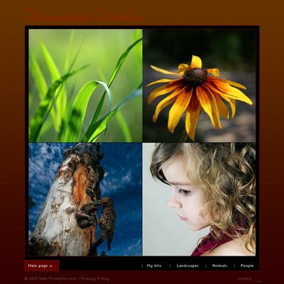 Pay for Fotografen Portfolio - Flash Website mit Quelldateien