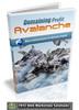 Thumbnail Domaining Profit Avalanche
