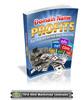 Thumbnail Domain Name Profits