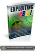 Thumbnail Exploiting Ebay