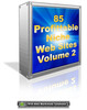 Thumbnail 85 Profittable Niche Web Sites Volume 2