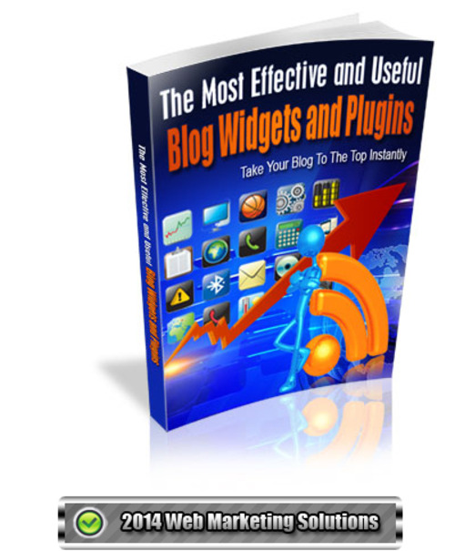 Pay for The Most Effective and Useful Blog Widgets and Plugins