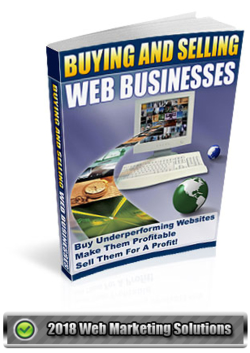 Pay for Buying And Selling Web Businesses