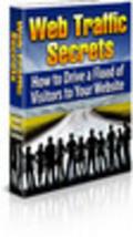 Thumbnail Web Traffic Secrets 25 Free Reports Bargain Hunter Warehouse