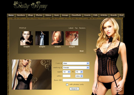 Pay for SexyHorny Dolphin Templates Community Software