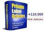 Thumbnail 115,000 PLR Articles Package (RAR FILE)