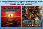Thumbnail 40 Beautiful Wine Quote Pictures