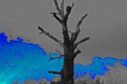 Thumbnail Distorted Sky