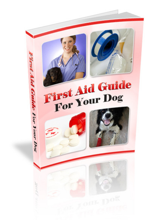 Pay for First Aid Guide For Your Dog
