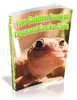 Thumbnail The Golden Book of Leopard Gecko Care