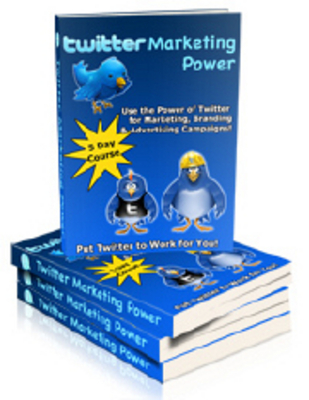 Pay for Twitter Marketing Power