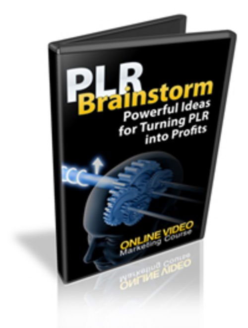 Pay for PLR Brainstorm Video Series